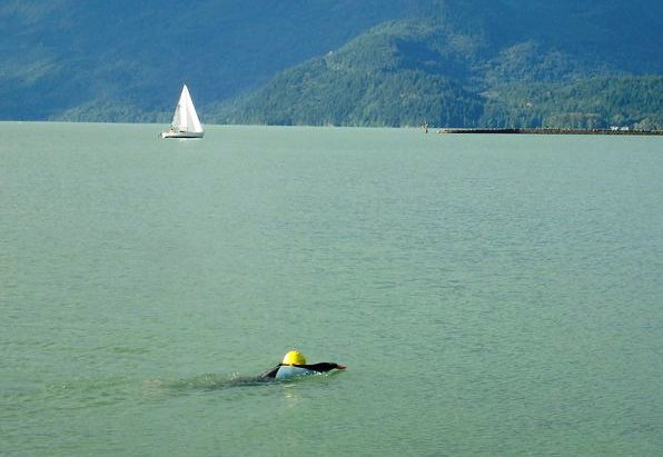 Persistence and Leadership: A Story of an Epic Swim